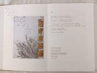 Dominique Malardé et Jigmé Thrinlé Gyatso, À l'estuaire du monde, arcanes et arabesques de l'état naturel, éditions Dongola, 2017, livre d'art.